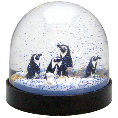 Waterglobe. Black Base. Penguin. African.
