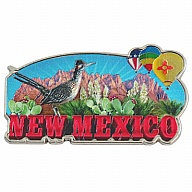 Magnet. Metal. Foil. NM. New Mexico.
