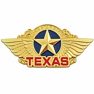 Magnet. Metal. Gold. Color Fill. TX. Lone Star State.